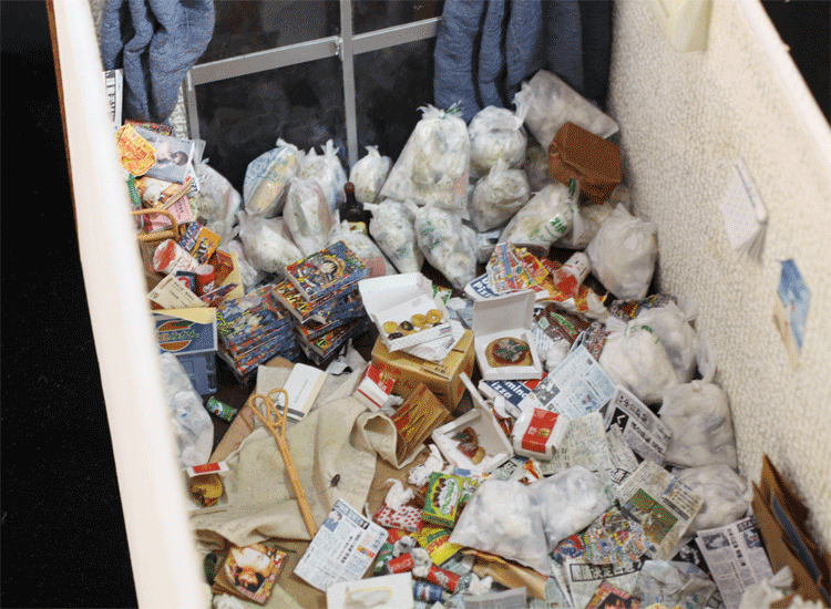 ゴミ屋敷05